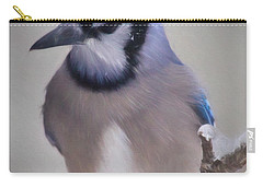 Winter Jay Carry-all Pouch by Lana Trussell