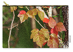 Winter On Gillot Blvd. Pt. Charlotte,fl Carry-all Pouch
