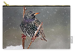 Winter Starling 2 Carry-all Pouch