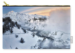 Winter Steam  Carry-all Pouch