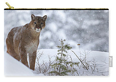 Winter Storm Carry-all Pouch by Steve McKinzie