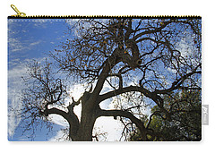 Carry-all Pouch featuring the pyrography Winter Tree by Shoal Hollingsworth