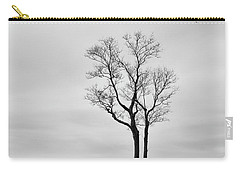 Winter Trees And Fences Carry-all Pouch