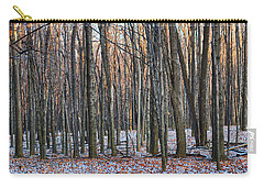 Winter - Uw Arboretum Madison Wisconsin Carry-all Pouch