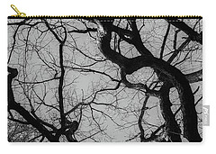 Winter Veins Carry-all Pouch