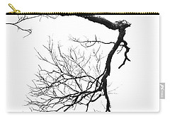 Carry-all Pouch featuring the photograph Wintered Over by Skip Willits