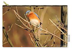 Winter's Bluebird  Carry-all Pouch