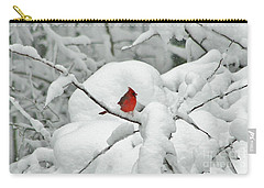 Winter's Way Carry-all Pouch