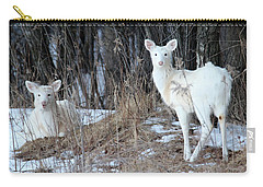 Wintery White Carry-all Pouch by Brook Burling
