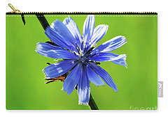 Wisconsin Blue Chicory Flower Carry-all Pouch