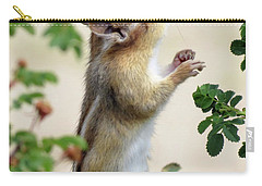Within Reach - Chipmunk Carry-all Pouch