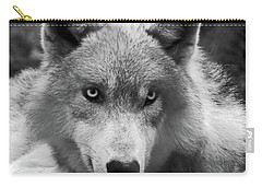 Wolf 1 Carry-all Pouch