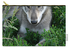 Carry-all Pouch featuring the photograph Wolf Pup Portrait by Shari Jardina