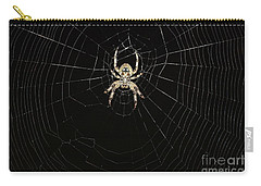 Carry-all Pouch featuring the photograph Wolf Spider And Web by Mark McReynolds