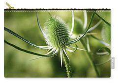 Wonderful Teasel - Carry-all Pouch