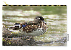 Wood Duck Hen Carry-all Pouch