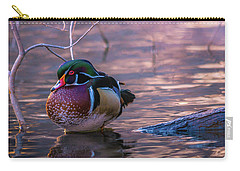 Carry-all Pouch featuring the photograph Wood Duck Resting by Bryan Carter