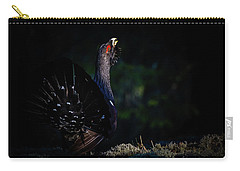 Wood Grouse's Sunbeam Carry-all Pouch by Torbjorn Swenelius