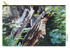 Wood In The Forest Carry-all Pouch by Janie Johnson