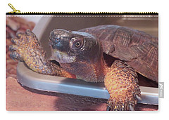 Wood Turtle Carry-all Pouch