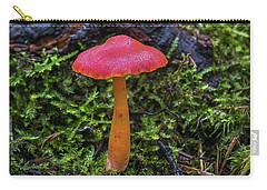 Carry-all Pouch featuring the photograph Woodland Floor Decor by Bill Pevlor