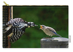 Woodpecker Feeding Bluebird Carry-all Pouch by Robert L Jackson