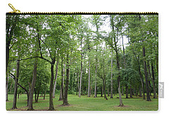 Carry-all Pouch featuring the photograph Woods At Lake Redman by Donald C Morgan