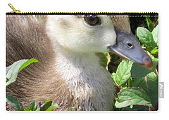 Woody Duckling Carry-all Pouch
