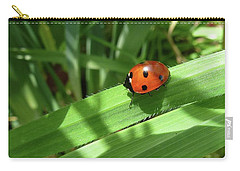 Carry-all Pouch featuring the photograph World Of Ladybug 1 by Jean Bernard Roussilhe