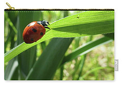 Carry-all Pouch featuring the photograph World Of Ladybug 2 by Jean Bernard Roussilhe