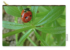 Carry-all Pouch featuring the photograph World Of Ladybug 3 by Jean Bernard Roussilhe