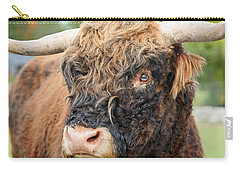 Yakity Yak Carry-all Pouch by Karol Livote