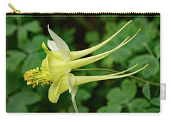 Carry-all Pouch featuring the photograph Yellow Columbine Profile by Jean Noren