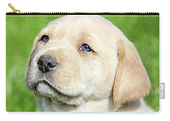 Carry-all Pouch featuring the photograph Yellow Labrador Retriever Puppy Gaze by Jennie Marie Schell