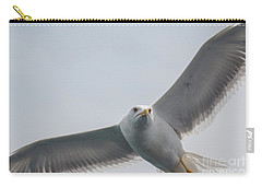 Carry-all Pouch featuring the photograph Yellow-legged Gull - Larus Michahellis by Jivko Nakev