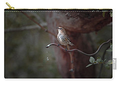 Yellow-rumped Warbler At Water Spout Carry-all Pouch