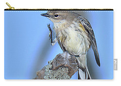 Yellow-rumped Warbler Itch Carry-all Pouch by Alan Lenk
