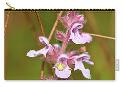 Carry-all Pouch featuring the photograph Yellow Spider  by Ann E Robson