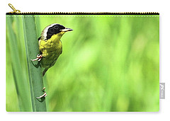 Yellow Throat Carry-all Pouch