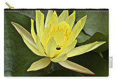 Yellow Waterlily With A Visiting Insect Carry-all Pouch