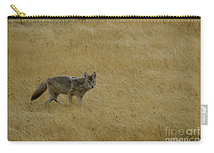 Carry-all Pouch featuring the photograph Yellowstone Coyote by Sue Smith