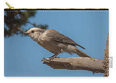 Yellowstone Grey Jay Carry-all Pouch