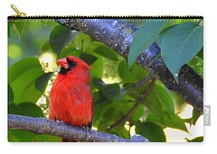 Carry-all Pouch featuring the photograph Yes I'm Listening by Betty-Anne McDonald