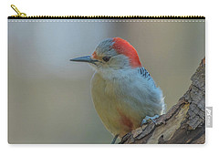 Young Red Bellied Woodpecker Carry-all Pouch
