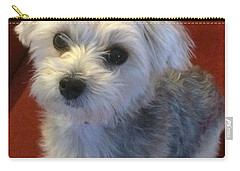 Yorkshire Terrier Carry-all Pouch by Robin Regan