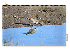 You Look Familiar  Carry-all Pouch by Karen Silvestri