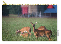 Carry-all Pouch featuring the photograph You Lookin' At Me? by Cindy Lark Hartman