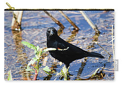 Carry-all Pouch featuring the photograph You Looking At Me by Gary Wightman