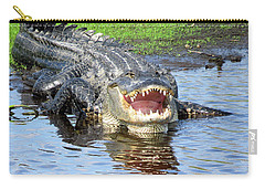 You May Think I'm Smiling Carry-all Pouch by Rosalie Scanlon