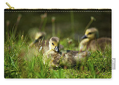 Carry-all Pouch featuring the photograph Young And Adorable by Karol Livote